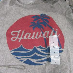 ハワイオールドネイビーTシャツ