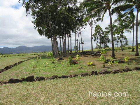ハワイのバースストーン